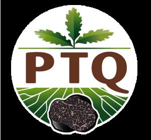 Logo-PTQ